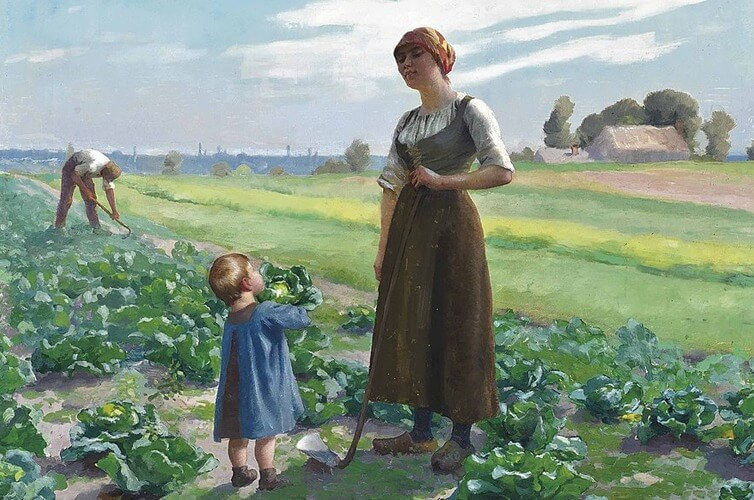 Aimé Perret, The lettuce patch