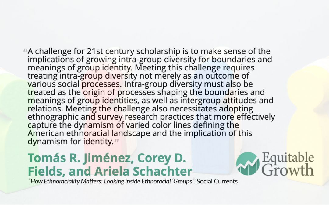 Quote from Corey Fields and co-authors on intra-group diversity and group identity
