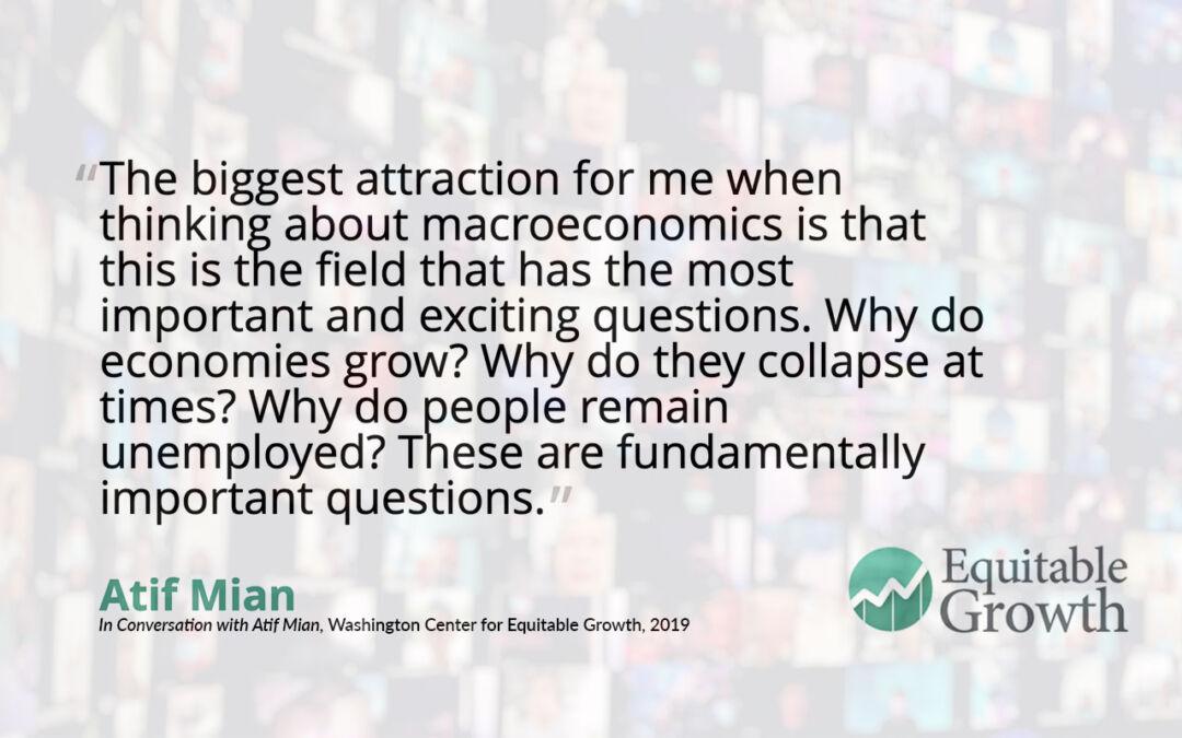 Quote from Atif Mian on macroeconomics
